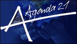 Agenda 21 Graphic